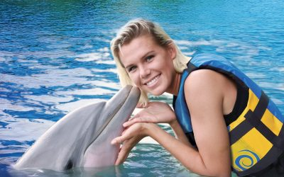 Thumbnail for Dolphin Discovery Cozumel