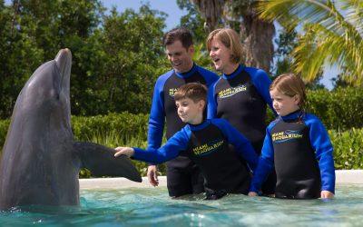 Thumbnail for Miami SeaQuarium